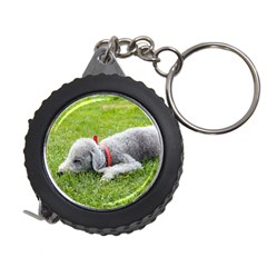 Bedlington Terrier Sleeping Measuring Tapes