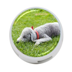 Bedlington Terrier Sleeping 4-Port USB Hub (One Side)