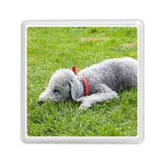Bedlington Terrier Sleeping Memory Card Reader (Square)