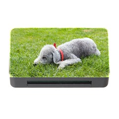 Bedlington Terrier Sleeping Memory Card Reader with CF