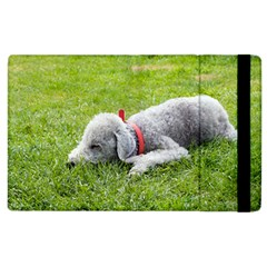 Bedlington Terrier Sleeping Apple iPad 2 Flip Case