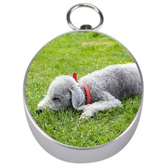 Bedlington Terrier Sleeping Silver Compasses