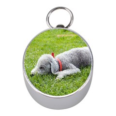 Bedlington Terrier Sleeping Mini Silver Compasses