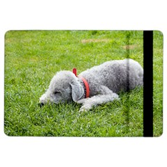 Bedlington Terrier Sleeping iPad Air 2 Flip