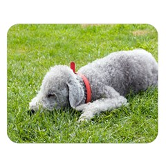 Bedlington Terrier Sleeping Double Sided Flano Blanket (Large)