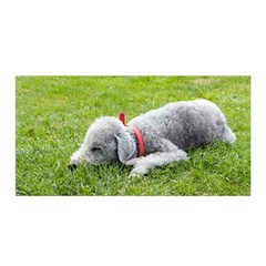 Bedlington Terrier Sleeping Satin Wrap