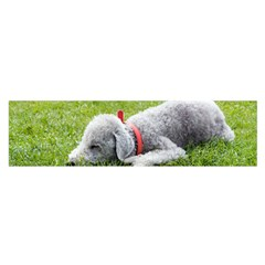 Bedlington Terrier Sleeping Satin Scarf (Oblong)