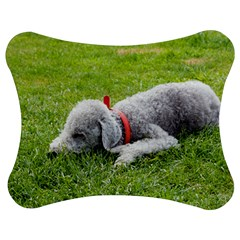 Bedlington Terrier Sleeping Jigsaw Puzzle Photo Stand (Bow)