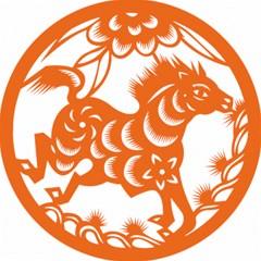 Chinese Zodiac Horoscope Horse Zhorse Star Orangeicon Magic Photo Cubes