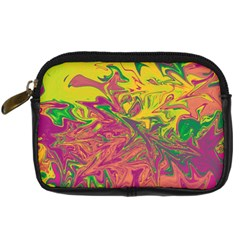 Colors Digital Camera Cases