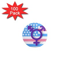 Transgender flag 1  Mini Magnets (100 pack)