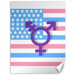 Transgender flag Canvas 36  x 48