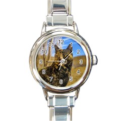 Adult Wild Cat Sitting and Watching Round Italian Charm Watch