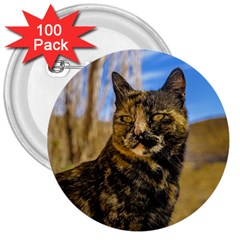 Adult Wild Cat Sitting and Watching 3  Buttons (100 pack)