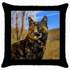 Adult Wild Cat Sitting and Watching Throw Pillow Case (Black)