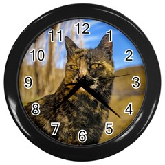 Adult Wild Cat Sitting and Watching Wall Clocks (Black)