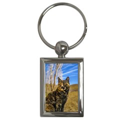 Adult Wild Cat Sitting and Watching Key Chains (Rectangle)