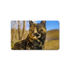 Adult Wild Cat Sitting and Watching Magnet (Name Card)
