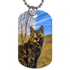 Adult Wild Cat Sitting and Watching Dog Tag (Two Sides)