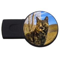 Adult Wild Cat Sitting and Watching USB Flash Drive Round (1 GB)