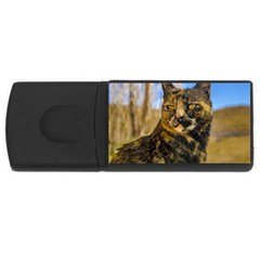 Adult Wild Cat Sitting and Watching USB Flash Drive Rectangular (2 GB)