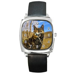 Adult Wild Cat Sitting and Watching Square Metal Watch