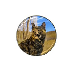 Adult Wild Cat Sitting and Watching Hat Clip Ball Marker (4 pack)