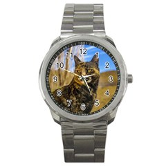 Adult Wild Cat Sitting and Watching Sport Metal Watch