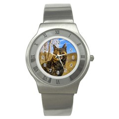 Adult Wild Cat Sitting and Watching Stainless Steel Watch