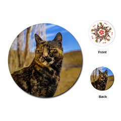 Adult Wild Cat Sitting and Watching Playing Cards (Round)