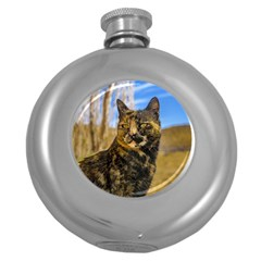 Adult Wild Cat Sitting and Watching Round Hip Flask (5 oz)