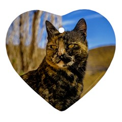 Adult Wild Cat Sitting and Watching Heart Ornament (Two Sides)