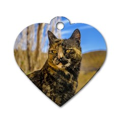 Adult Wild Cat Sitting and Watching Dog Tag Heart (Two Sides)