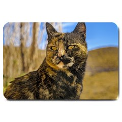 Adult Wild Cat Sitting and Watching Large Doormat