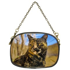 Adult Wild Cat Sitting and Watching Chain Purses (One Side)