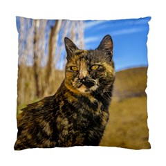 Adult Wild Cat Sitting and Watching Standard Cushion Case (One Side)