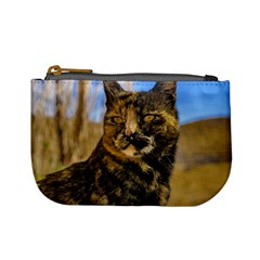 Adult Wild Cat Sitting and Watching Mini Coin Purses
