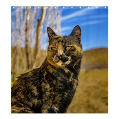 Adult Wild Cat Sitting and Watching Shower Curtain 66  x 72  (Large)