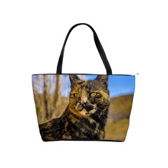 Adult Wild Cat Sitting and Watching Shoulder Handbags