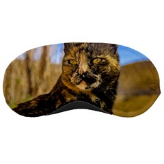 Adult Wild Cat Sitting and Watching Sleeping Masks
