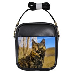 Adult Wild Cat Sitting and Watching Girls Sling Bags