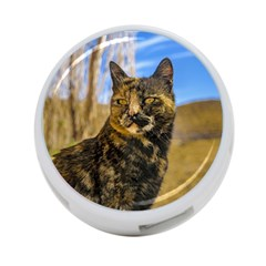 Adult Wild Cat Sitting and Watching 4-Port USB Hub (Two Sides)