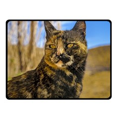 Adult Wild Cat Sitting and Watching Fleece Blanket (Small)