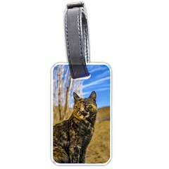 Adult Wild Cat Sitting and Watching Luggage Tags (Two Sides)