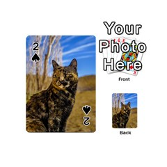 Adult Wild Cat Sitting and Watching Playing Cards 54 (Mini)