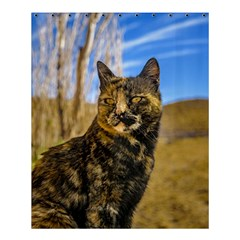 Adult Wild Cat Sitting and Watching Shower Curtain 60  x 72  (Medium)