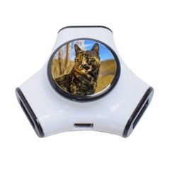 Adult Wild Cat Sitting and Watching 3-Port USB Hub