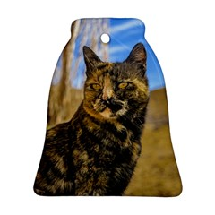 Adult Wild Cat Sitting and Watching Ornament (Bell)