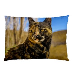 Adult Wild Cat Sitting and Watching Pillow Case (Two Sides)