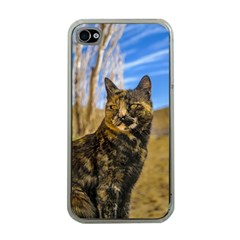 Adult Wild Cat Sitting and Watching Apple iPhone 4 Case (Clear)